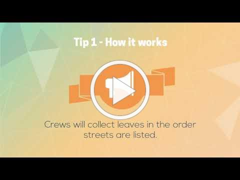 Ballwin Curbside Leaf Collection Tips