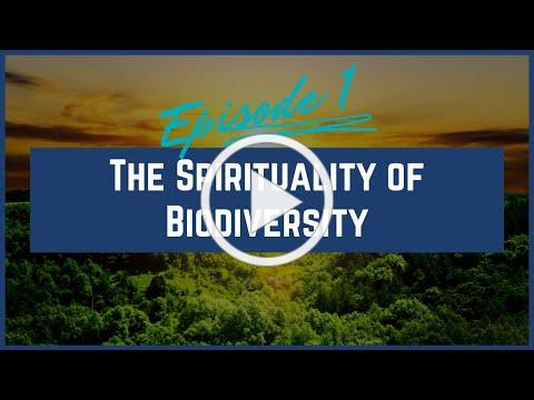 The Spirituality of Biodiversity   Jubilee for the Earth