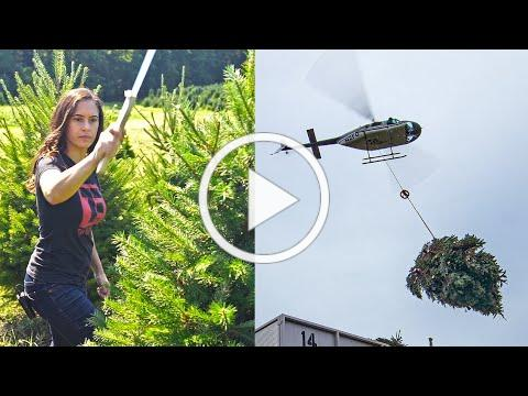 CHRISTMAS TREE | How Does it Grow?