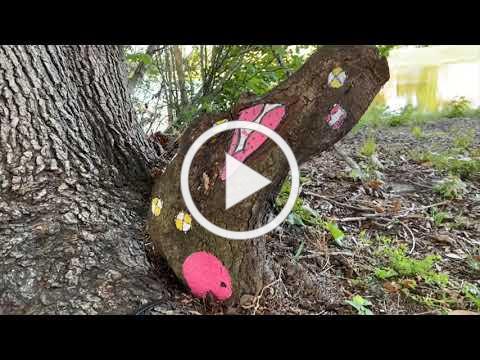 Campfire Fridays: Fairy House Craft