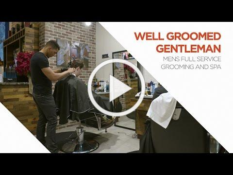 Well Groomed Gentleman