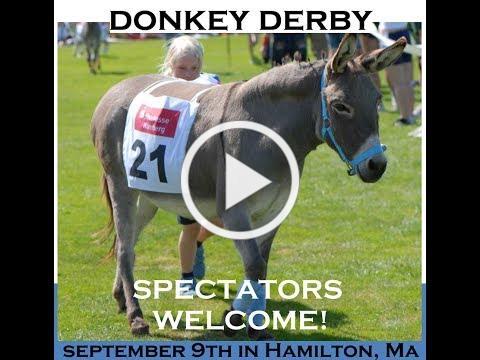 Donkey Derby 2017