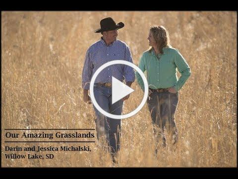 Our Amazing Grasslands ~ Michalski Ranch