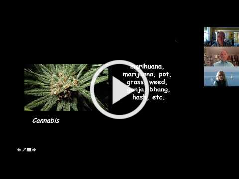 PD Active Webinar with Dr. Presti on Cannabis and PD