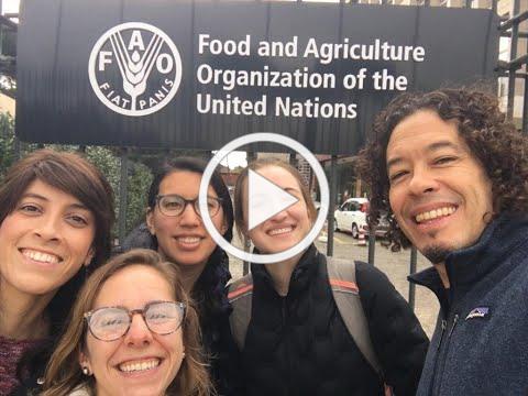 FAO Duke Partnership