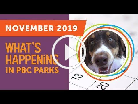 What's Happening in PBC Parks: November 2019