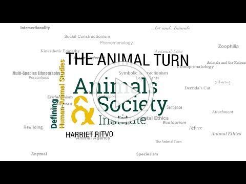 Defining The Animal Turn with Harriet Ritvo - ASI's Defining Human-Animal Studies 28