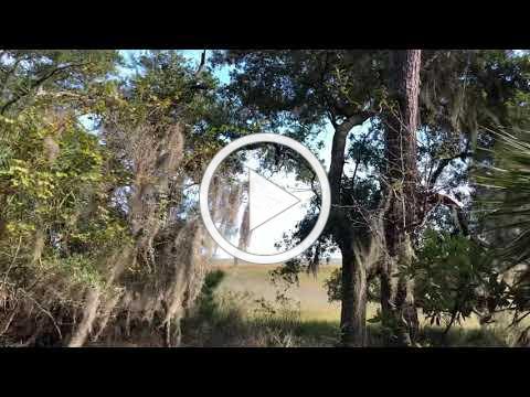 Visit Cannon's Point Preserve 16