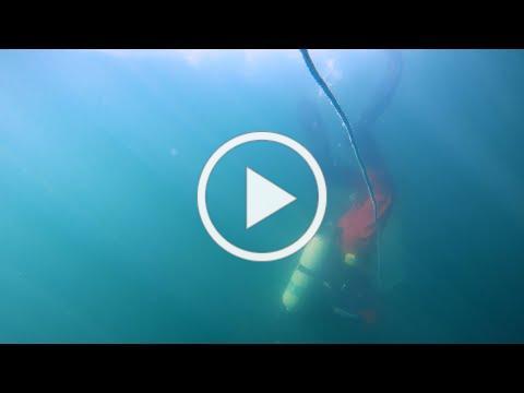 Fishery Vignette | David Tarr - Scallop Diving