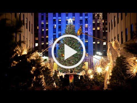 Rockefeller Center Christmas Tree part of Habitat for Humanity home