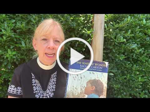 The Rev. Anita Schell