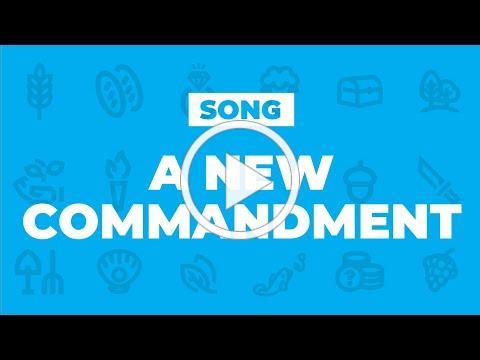 Un mandamiento nuevo // A new commandment
