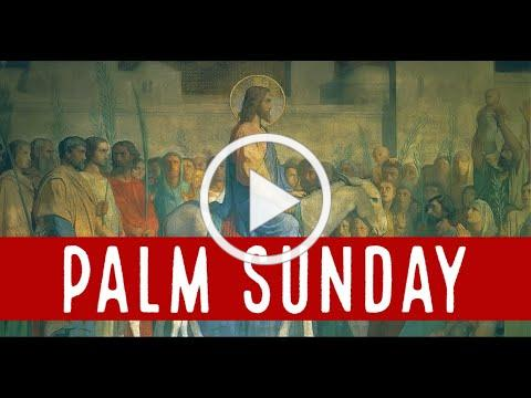 Palm Sunday Reflection, with Deacon Matt