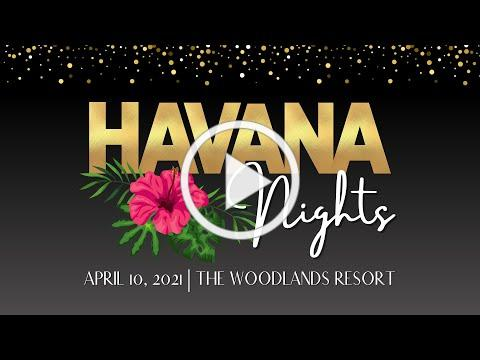 Havana Nights Gala - Live Auction Preview