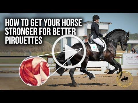 How to get your horse stronger for better pirouettes? - Dressage Mastery TV Ep290