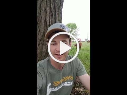 Virtual Field Day Announcement