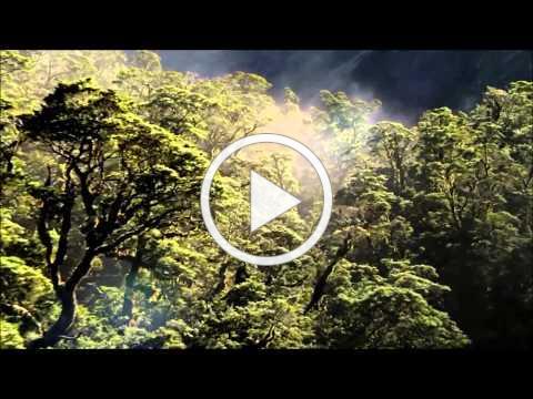 Pat Metheny Group - The Awakening