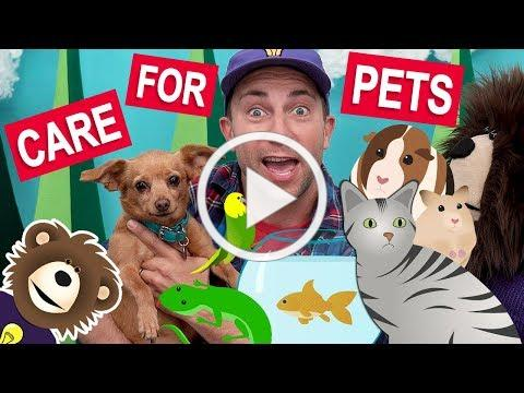 Teaching Kids to Care for Pets   Videos for Toddlers