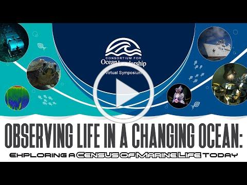 Observing Life in a Changing Ocean: Exploring a 'Census of Marine Life' Today