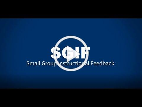Small Group Instructional Feedback