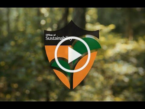 Sustainability at Princeton 2020
