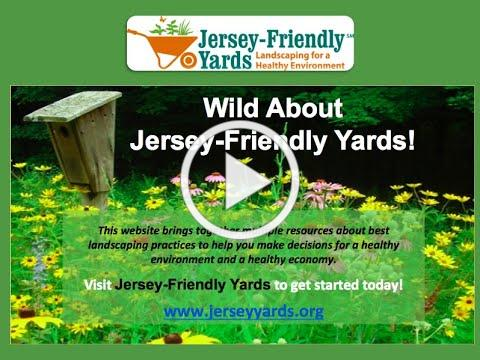 Wild About Jersey Friendly Yards!