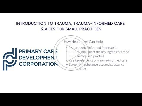 Introduction to Trauma, Trauma-Informed Care & ACEs for Small Practices
