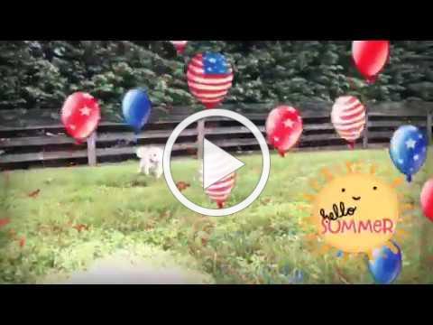 July 4th Video