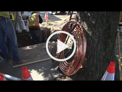 Newark says lead water pipes nearly all replaced