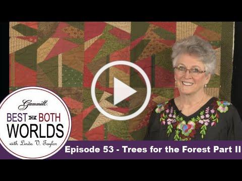 Best of Both Worlds 53 - Trees for the Forest Part 2