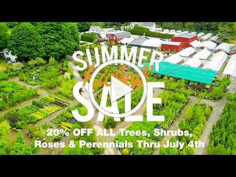 Estabrook's Summer Kickoff Sale 2018