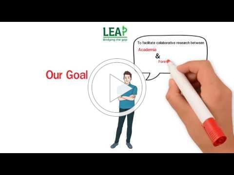 LEAP Explained