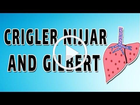 Crigler-Najjar, Gilbert, Dubin and Rotor Syndromes