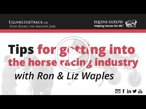Tips for getting into the horse industry and in particular the racing industry with Ron & Liz Waples