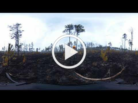 360 Video - Picture Creek Video 3: Post-burn footage of Picture Creek Diabase Barren, Butner, NC.