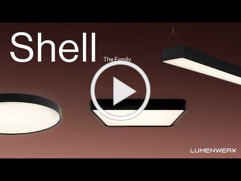 Meet the Shell family