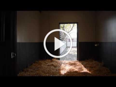UC Davis Center for Equine Health - CEM Quarantine Facilities Walkthrough