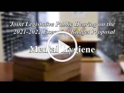 Joint Legislative Public Hearing on 2021 Executive Budget Proposal: Mental Hygiene - 02/05/21