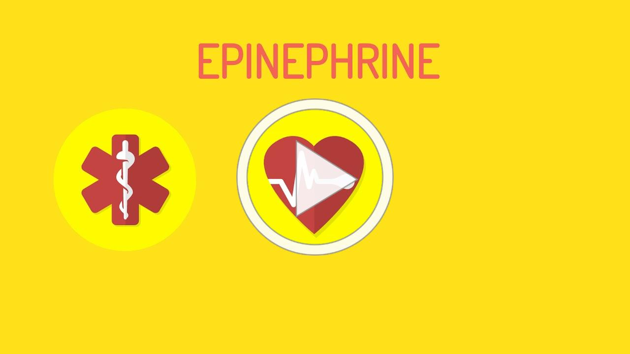 Anaphylaxis 101 - Understand the basics