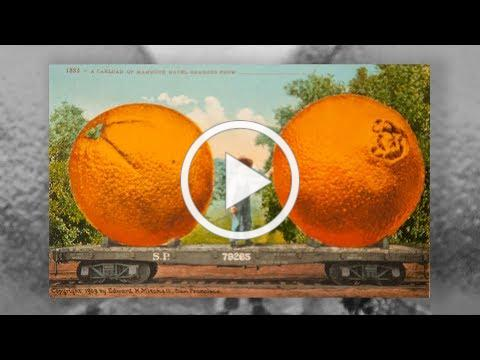 King Citrus and the Selling of the California Dream
