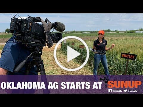 Chickasha Virtual Wheat Field Day (4/24/20)