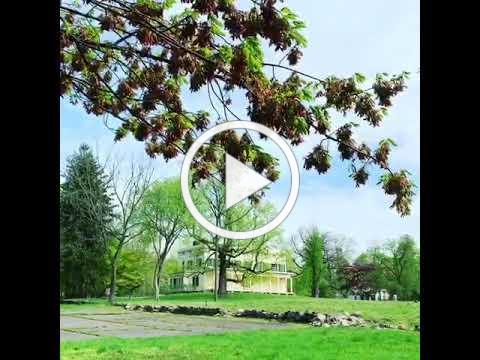 Springtime at the Mansion
