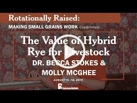 The Value of Hybrid Rye for Livestock - Dr. Becca Stokes & Molly McGhee