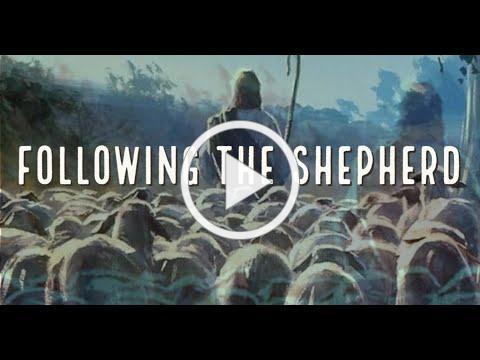 Following the Shepherd, with Deacon Matt