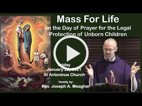 Fr Joseph Meagher: -Day of Prayer for the Legal Protection of Unborn Children. January 22, 2021.