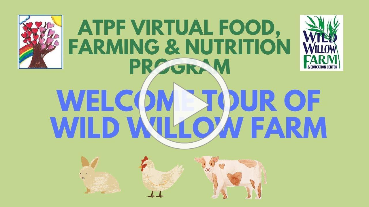 Welcome Tour of Wild Willow Farm