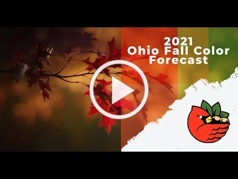 2021 Ohio Fall Color Forecast