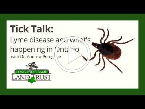Tick Talk: Lyme Disease and What's Happening in Ontario