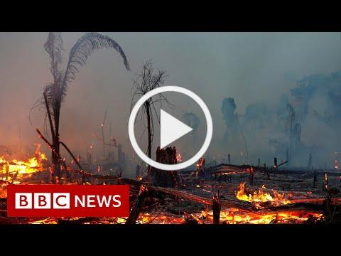 Climate change IPCC report is 'code red for humanity', UN scientists say - BBC News