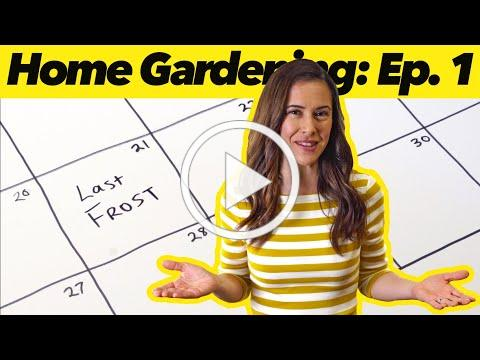 What to Plant When   Home Gardening: Ep. 1